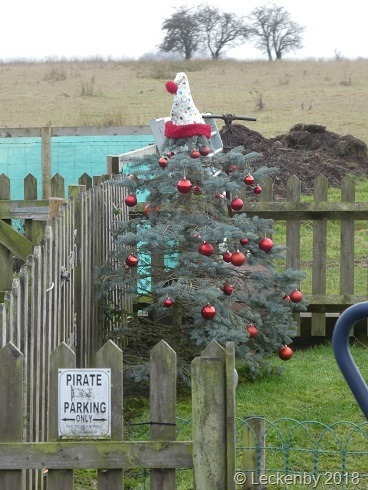 Boxing Day tree
